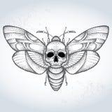 Επικεφαλής atropos σκώρων ή Acherontia γερακιών θανάτου στο διαστιγμένο ύφος στο κατασκευασμένο υπόβαθρο Στοκ Εικόνες