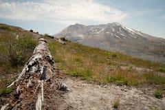 Επικολλήστε Άγιο Helens Στοκ εικόνες με δικαίωμα ελεύθερης χρήσης