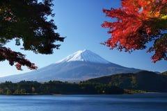 Επικολλήστε Fuji στοκ φωτογραφία