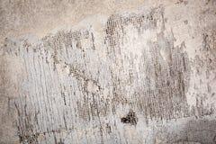 Επικονιασμένη σύσταση τοίχων Στοκ Εικόνες
