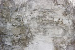 Επικονιασμένος τοίχος με τα κτυπήματα βουρτσών στοκ εικόνες