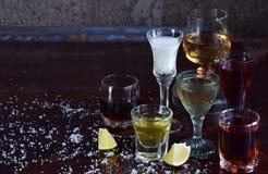 Επιλογή των οινοπνευματωδών ποτών Σύνολο κρασιού, κονιάκ, ηδύποτο, tincture, κονιάκ, ουίσκυ στα γυαλιά Μεγάλη ποικιλία του οινοπν στοκ φωτογραφία