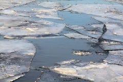 Επιπλέοντες επιπλέοντες πάγοι πάγου με το νέο πάγο στοκ εικόνα με δικαίωμα ελεύθερης χρήσης