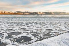 Επιπλέοντες πάγοι πάγου στην ακτή της λίμνης Laberge Yukon Καναδάς στοκ εικόνες