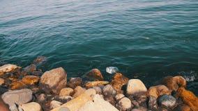 Επιπλέοντα σώματα απορριμάτων στη Κασπία Θάλασσα κοντά στις πέτρες στο ανάχωμα του Μπακού απόθεμα βίντεο