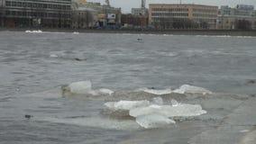 Επιπλέοντα σώματα επιπλέοντος πάγου πάγου στο νερό φιλμ μικρού μήκους