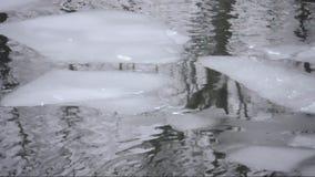 Επιπλέοντες πάγοι πάγου σε έναν ποταμό απόθεμα βίντεο