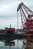 επιπλέων νέος θαλάσσιος λιμένας εκβάθυνσης γερανών Στοκ εικόνες με δικαίωμα ελεύθερης χρήσης