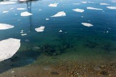 Επιπλέων πάγος πάγου στοκ εικόνα με δικαίωμα ελεύθερης χρήσης