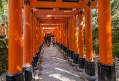 Επισκέπτες μέσα στη διάσημη λάρνακα Fushimi Inari στο Κιότο, Ιαπωνία στοκ φωτογραφία