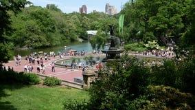 Επισκέπτες στην πηγή στο Central Park απόθεμα βίντεο