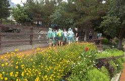 Επισκέπτες στο πάρκο σαφάρι στο βροχερό καιρό στο υπαίθριο κλουβί με ένα με ραβδώσεις Gelendzhik, περιοχή Krasnodar, της Ρωσίας Στοκ φωτογραφία με δικαίωμα ελεύθερης χρήσης