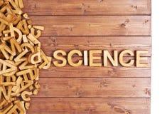 Επιστήμη λέξης που γίνεται με τις ξύλινες επιστολές Στοκ Φωτογραφία