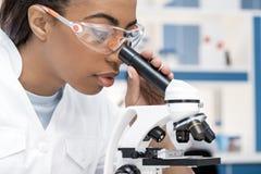 Επιστήμονας αφροαμερικάνων στο παλτό εργαστηρίων που λειτουργεί με το μικροσκόπιο στο χημικό εργαστήριο στοκ εικόνα