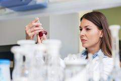 Επιστήμονας γυναικών που πραγματοποιεί το πείραμα στο ερευνητικό εργαστήριο Στοκ Εικόνα
