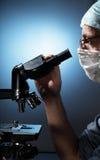 επιστήμονας μικροσκοπί&omega στοκ εικόνες με δικαίωμα ελεύθερης χρήσης