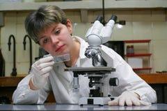 επιστήμονας μικροσκοπί&omega Στοκ φωτογραφία με δικαίωμα ελεύθερης χρήσης