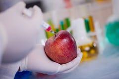 Επιστήμονας πειράματος ΓΤΟ που εγχέει το υγρό στο μήλο στο agricult Στοκ φωτογραφία με δικαίωμα ελεύθερης χρήσης