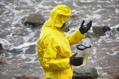 Επιστήμονας που εξετάζει τα μικρά ψάρια Στοκ φωτογραφία με δικαίωμα ελεύθερης χρήσης
