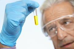 Επιστήμονας που εξετάζει το σωλήνα δοκιμής του κίτρινου υγρού Στοκ Φωτογραφία
