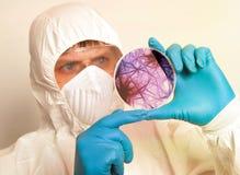 Επιστήμονας που κρατά ένα petri πιάτο με τα κύτταρα ιών στοκ εικόνα με δικαίωμα ελεύθερης χρήσης