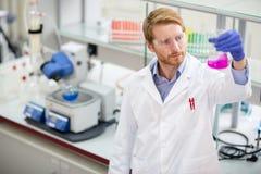 Επιστήμονας που παρατηρεί το υγρό αντιδραστήριο στοκ εικόνες
