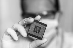 Επιστήμονας που παρουσιάζει μικροτσίπ υπολογιστών πριν από το ηλεκτρόνιο επισκευών στοκ φωτογραφία με δικαίωμα ελεύθερης χρήσης