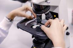 Επιστήμονας που χρησιμοποιεί ένα μικροσκόπιο σε ένα εργαστήριο Στοκ φωτογραφία με δικαίωμα ελεύθερης χρήσης