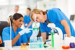 Επιστήμονες που μελετούν τις ουσίες στοκ εικόνα