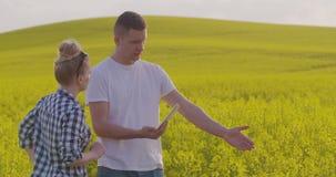 Επιστήμονες που φωτογραφίζουν το συναπόσπορο μέσω της ψηφιακής ταμπλέτας συζητώντας στο αγρόκτημα απόθεμα βίντεο