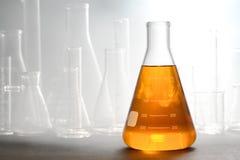 Επιστημονικό πείραμα στο ερευνητικό εργαστήριο επιστήμης στοκ εικόνες