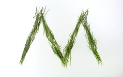 Επιστολή του αλφάβητου που γράφεται με τη φρέσκια πράσινη χλόη Στοκ εικόνες με δικαίωμα ελεύθερης χρήσης