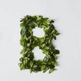 Επιστολές αλφάβητου από τα φύλλα Στοκ Εικόνα