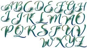 Επιστολές που διακοσμούνται με τα φτερά peacock ελεύθερη απεικόνιση δικαιώματος
