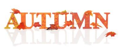 Επιστολές φθινοπώρου με τα φύλλα Στοκ εικόνα με δικαίωμα ελεύθερης χρήσης