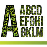Επιστολές Eco που τίθενται με τα πράσινα φύλλα Διανυσματικά στοιχεία προτύπων σχεδίου για την εφαρμογή οικολογίας ή την εταιρική  Στοκ φωτογραφίες με δικαίωμα ελεύθερης χρήσης