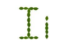 Επιστολή Ι, αλφάβητο που γίνεται από τα πράσινα φύλλα Στοκ Εικόνα