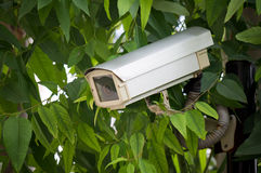 επιτήρηση φωτογραφικών μηχανών στοκ φωτογραφίες