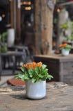 Επιτραπέζια διακόσμηση φλυτζανιών λουλουδιών Στοκ Φωτογραφία