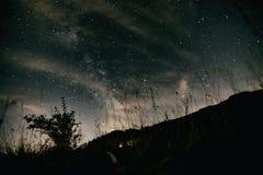 επιτραπέζια χρήση φωτογραφιών νύχτας τοπίων εγκαταστάσεων εικόνας ανασκόπησης όμορφη Στοκ φωτογραφία με δικαίωμα ελεύθερης χρήσης