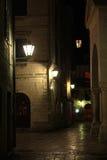 επιτραπέζια χρήση φωτογραφιών νύχτας τοπίων εγκαταστάσεων εικόνας ανασκόπησης όμορφη Στοκ Εικόνα