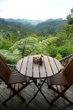 επιτραπέζια όψη κήπων καφέδ&omega Στοκ Φωτογραφίες