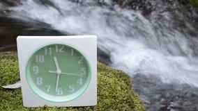 Επιτραπέζιο ρολόι σε ένα βρύο απόθεμα βίντεο