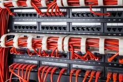 Επιτροπή δικτύων, μετάβαση και κόκκινο καλώδιο Διαδικτύου στο κέντρο δεδομένων Μαύρος διακόπτης και κόκκινα καλώδια ethernet, ένν Στοκ Φωτογραφίες