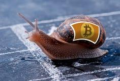 Επιτυχία μεταφοράς του νομίσματος Bitcoin Στοκ Εικόνα