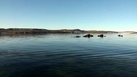 Επιφάνεια ακτών και νερού του αρκτικού ωκεανού στο νέο νησί γήινου Vaigach φιλμ μικρού μήκους