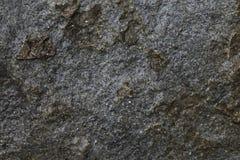 επιφάνεια βράχου που μαρ&al Στοκ Εικόνα