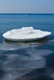 επιφάνεια θάλασσας πάγου Στοκ Φωτογραφία