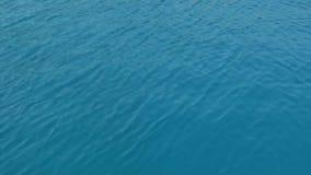 επιφάνεια θάλασσας κυμ&alp φιλμ μικρού μήκους
