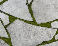 Επιφάνεια με τις πέτρες και το βρύο Στοκ εικόνες με δικαίωμα ελεύθερης χρήσης
